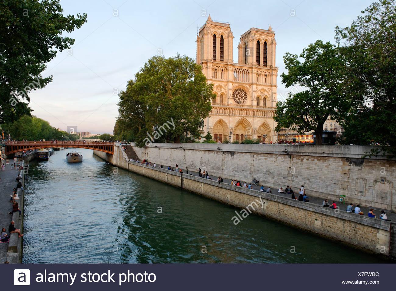 Cathedral Notre-Dame de Paris in the last evening light, on the Île de la Cité and the Seine, Paris, Ile-de-France, France - Stock Image