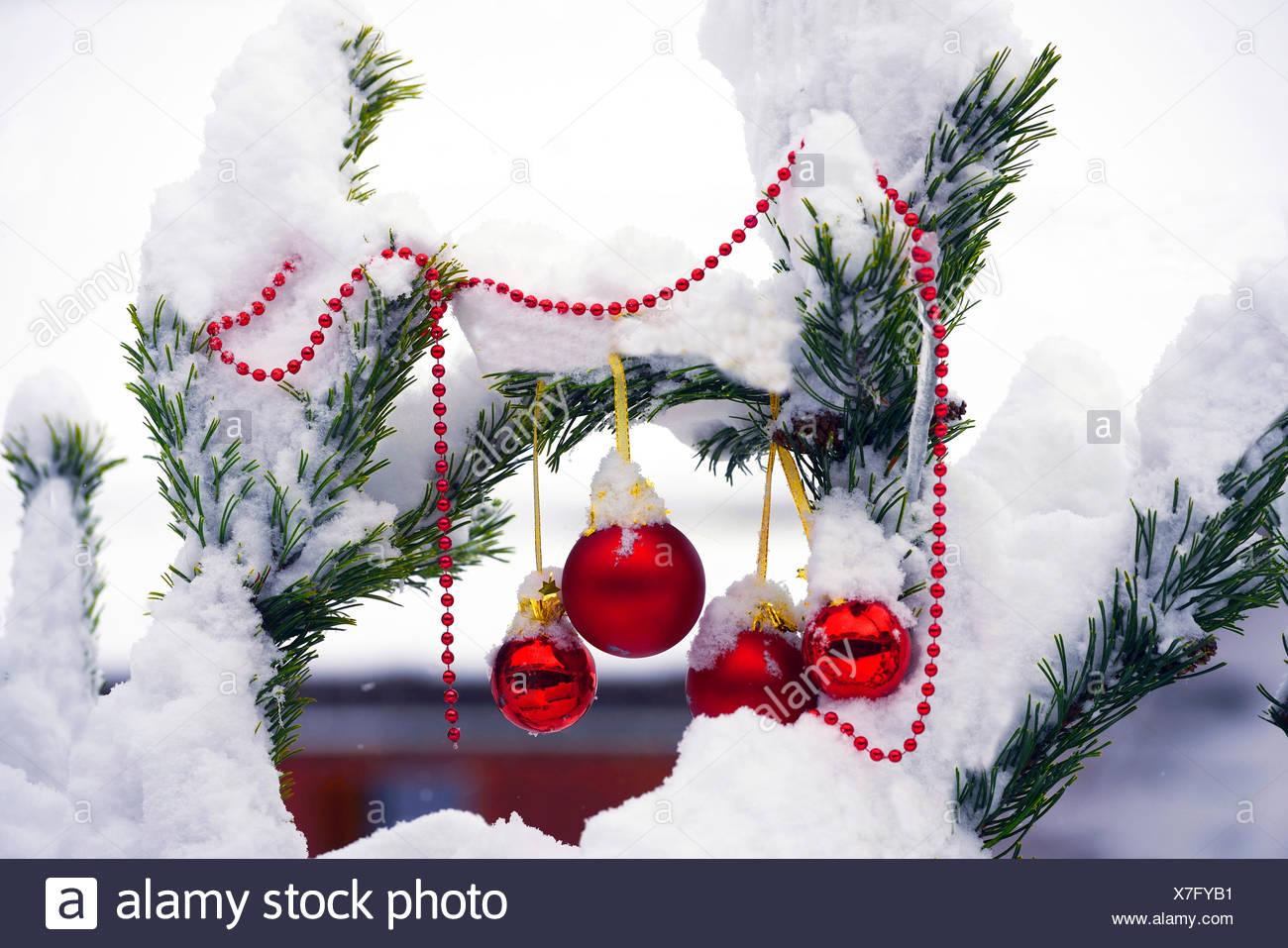 Christbaumkugeln At.Christbaumkugeln An Verschneiten Tannenzweigen Frankreich
