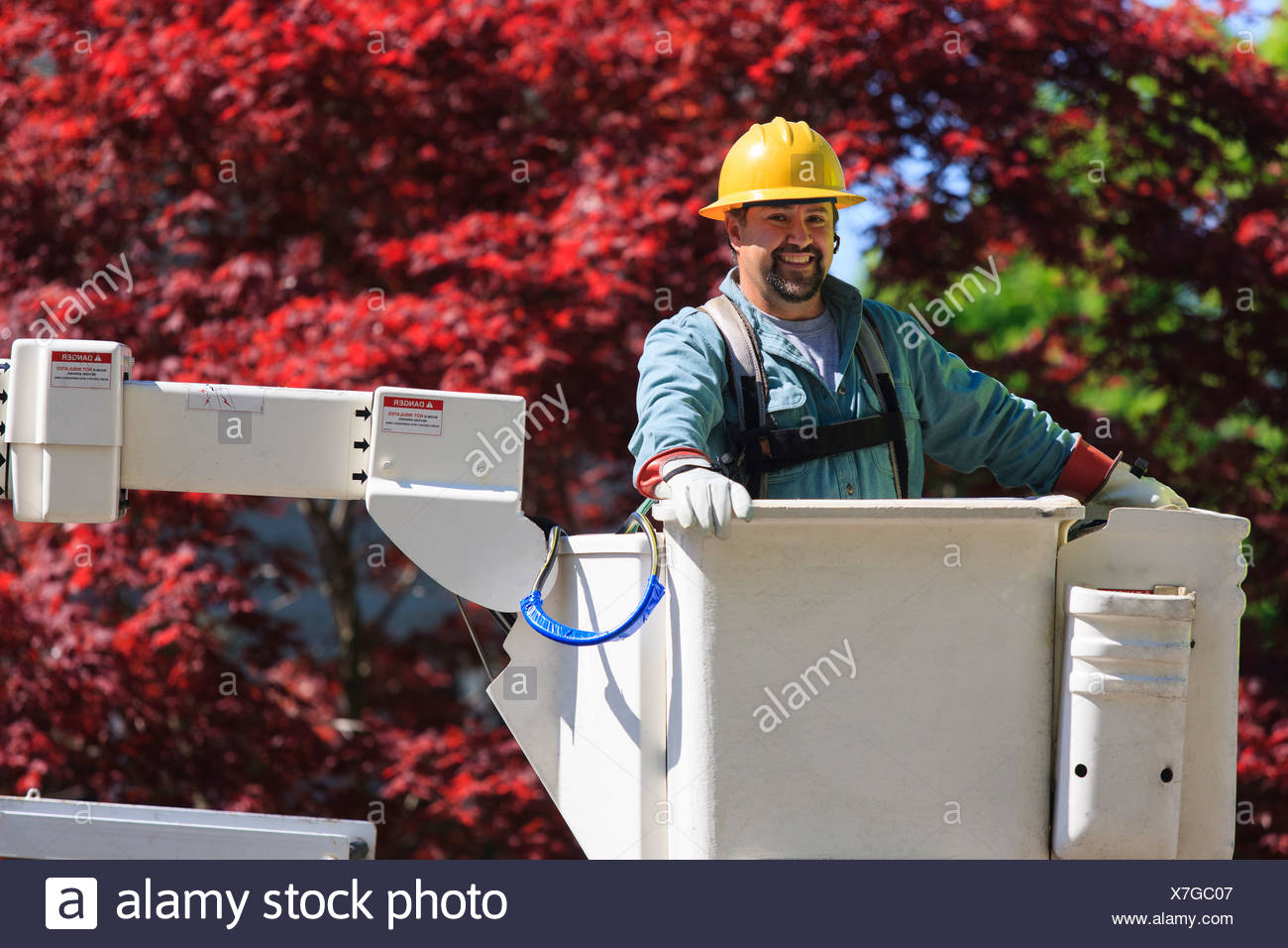 Power engineer in lift bucket wearing a safety harness and insulated gloves, Braintree, Massachusetts, USA - Stock Image