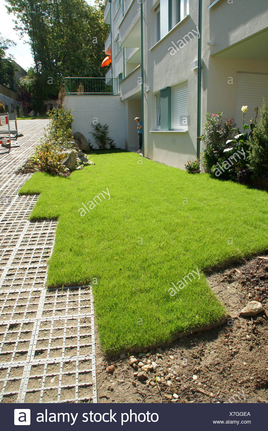 Rollrasen, rolled sod Stock Photo