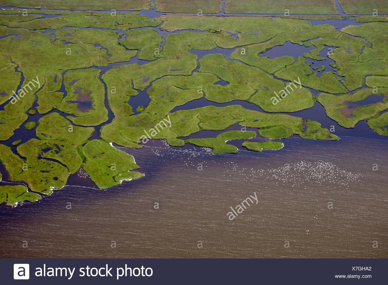 Several rivers flowing into a body of water, aerial view - Stock Image