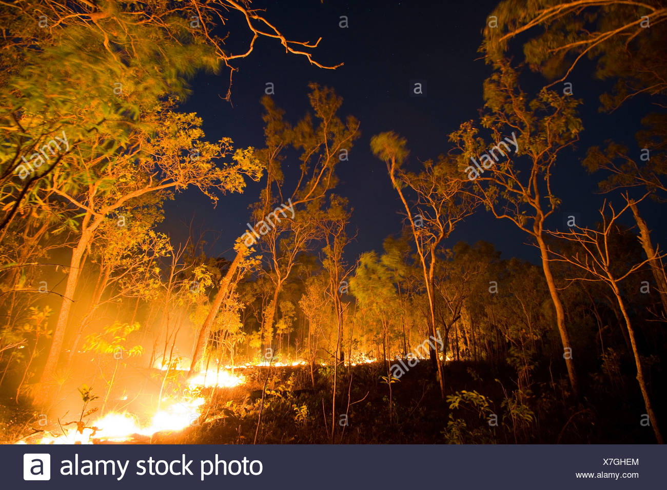 Bush fire, Arnhemland, Northern Territory - Stock Image