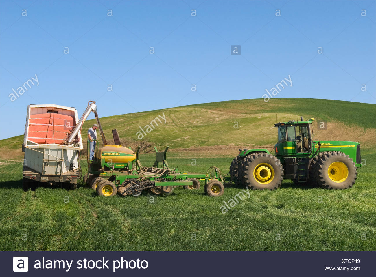 Loading an air seeder with wheat seeds to replant snow damaged areas of winter wheat in the rolling hills of the Region / USA. - Stock Image