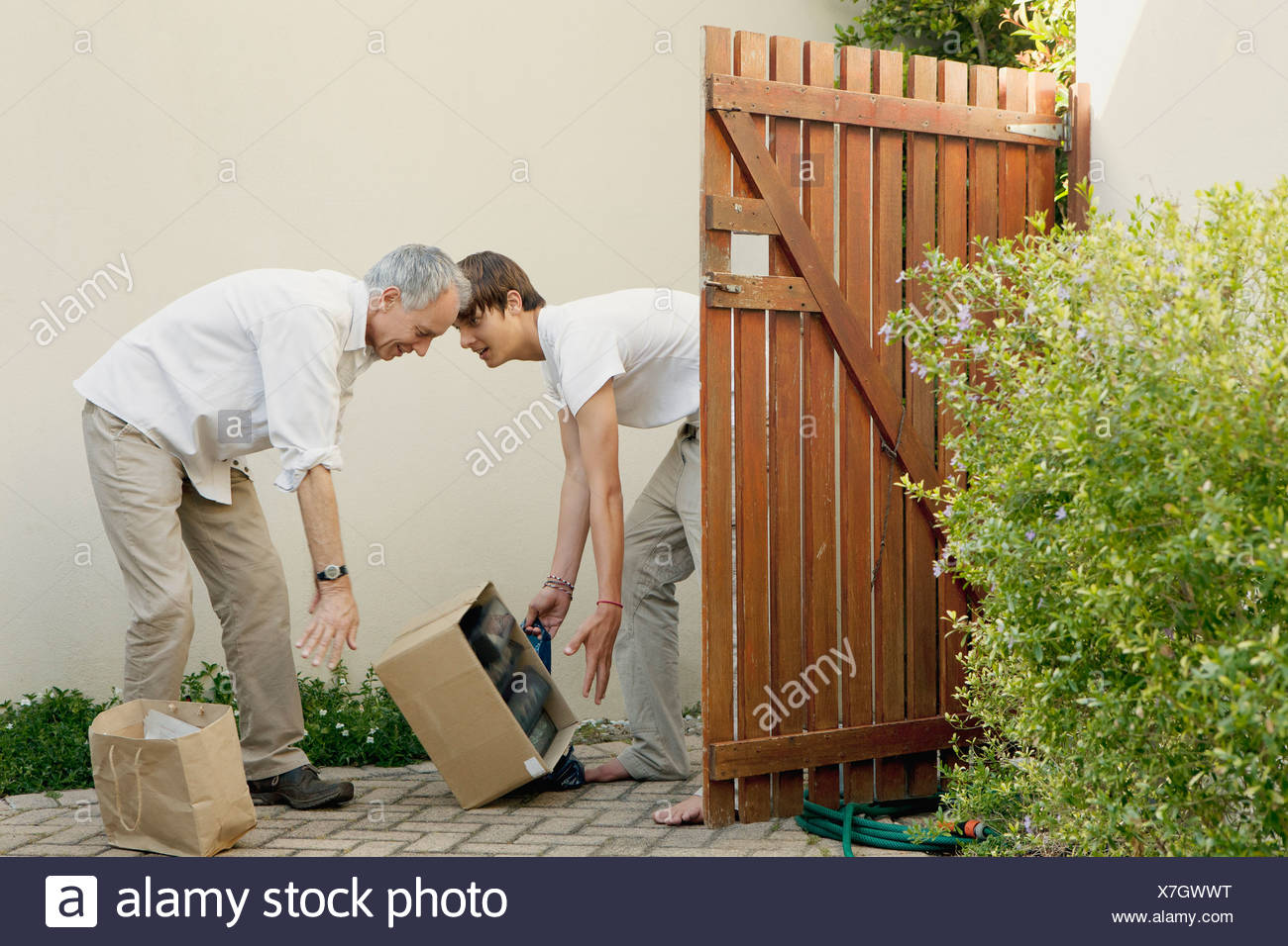 Father and son dropping box outdoors - Stock Image