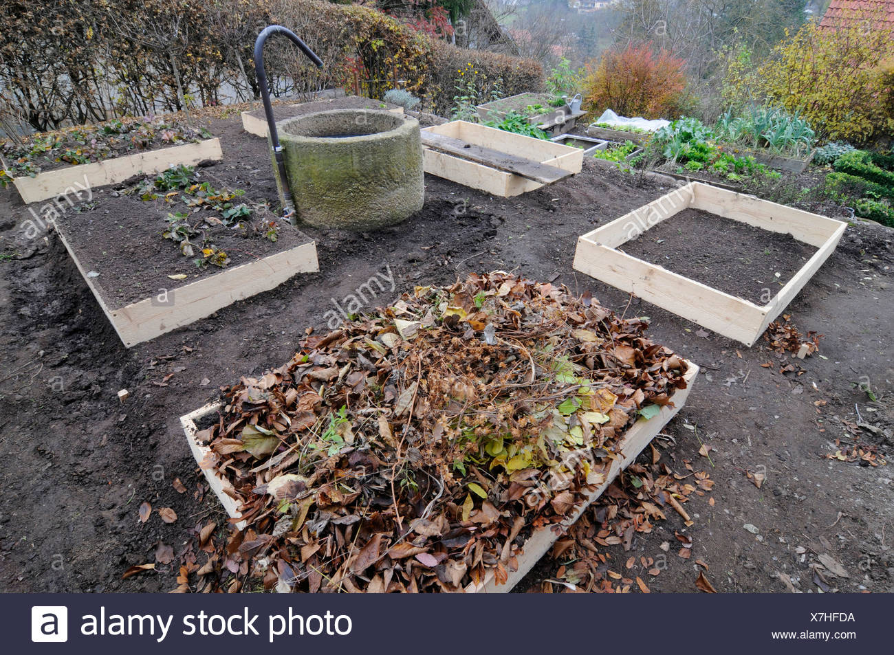 Installation of organic garden, boxes system, compost - Stock Image