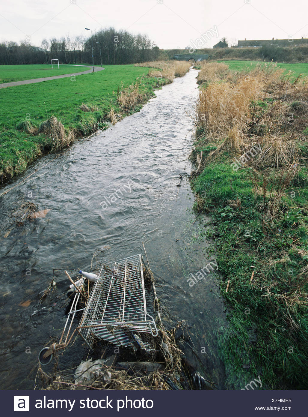 Shopping trolley in a stream Stock Photo