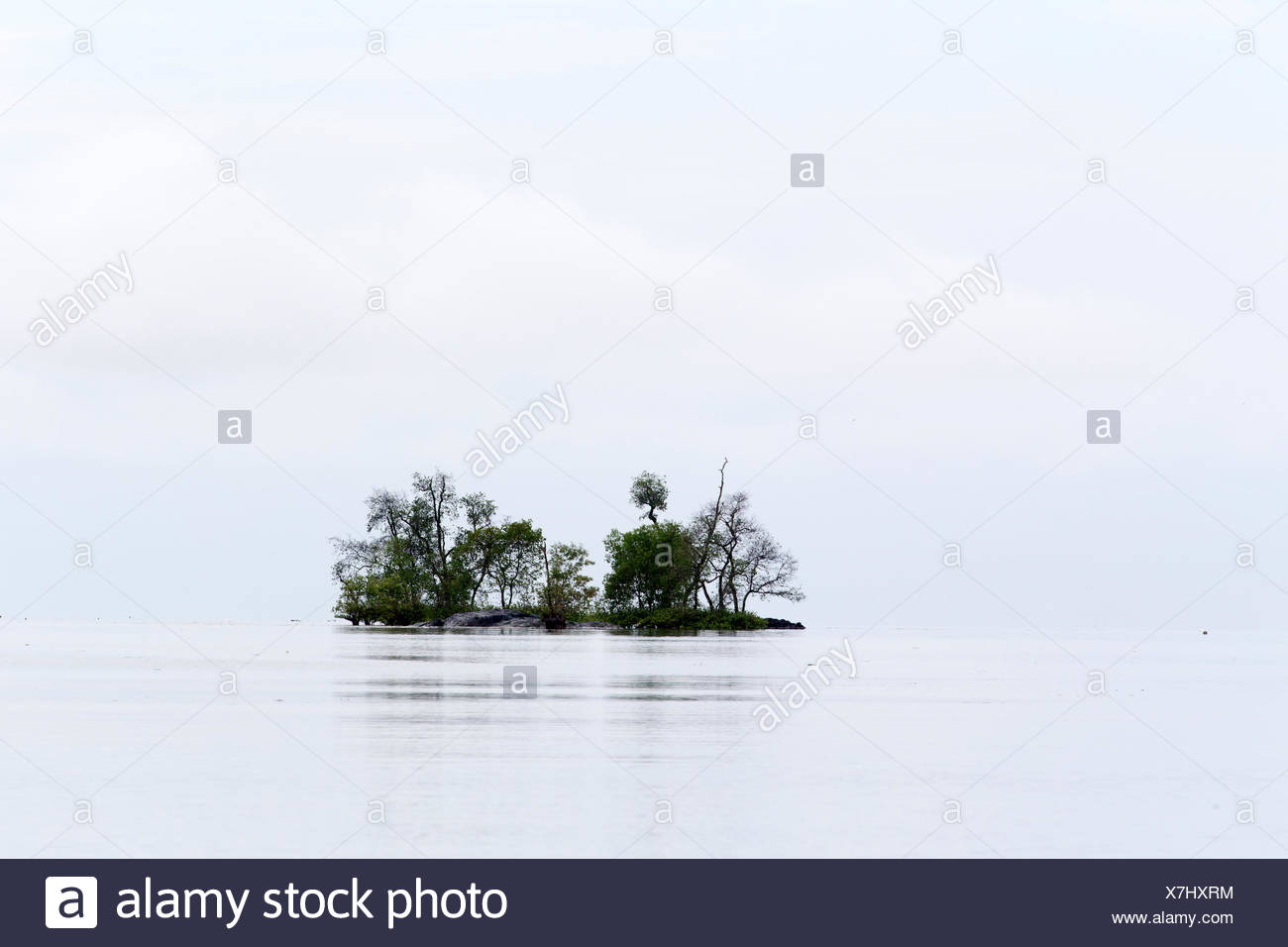 Mouth of the river in Salak South China Sea - Sarawak Borneo - Stock Image