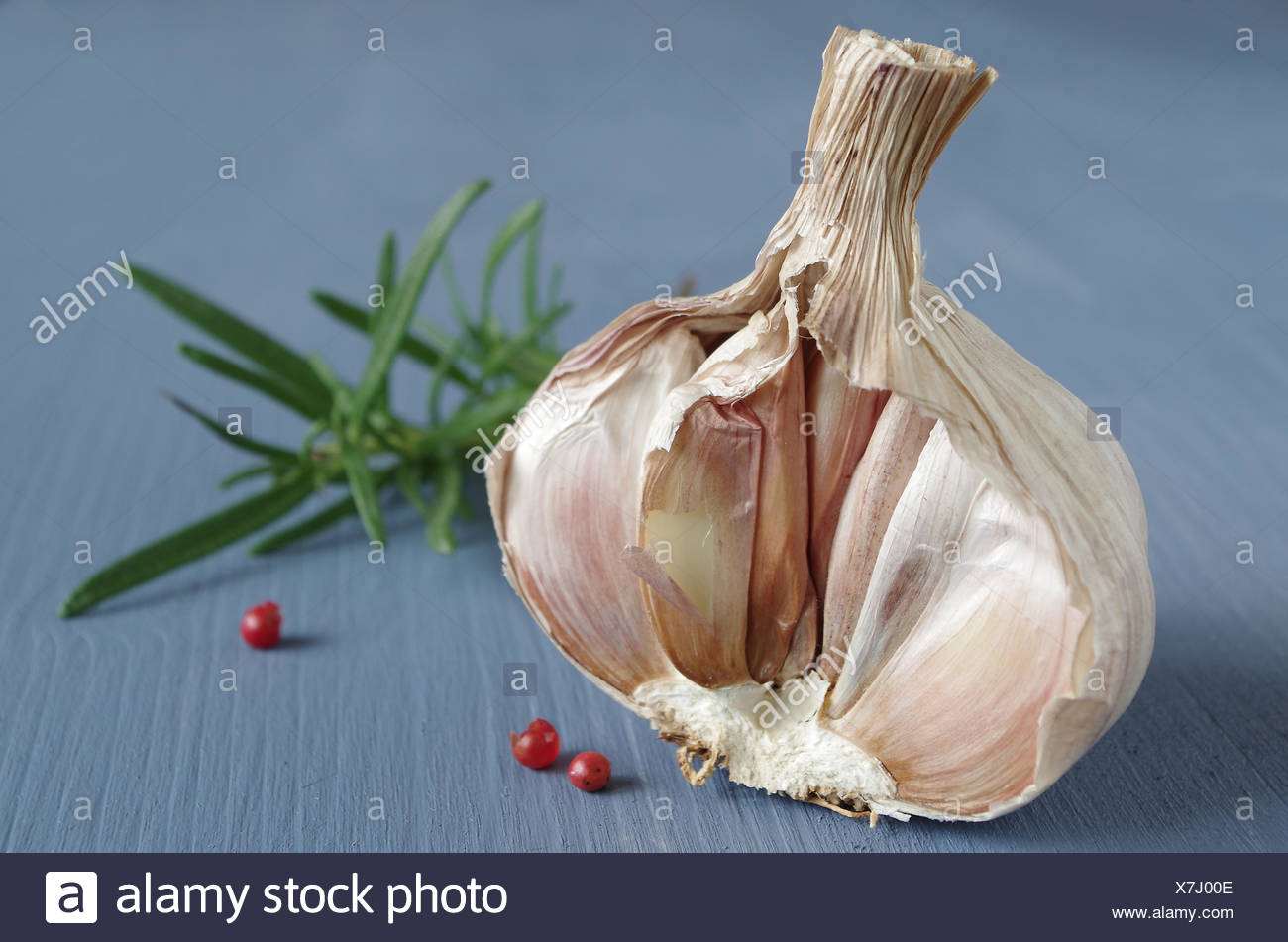 garlic bulb - Stock Image