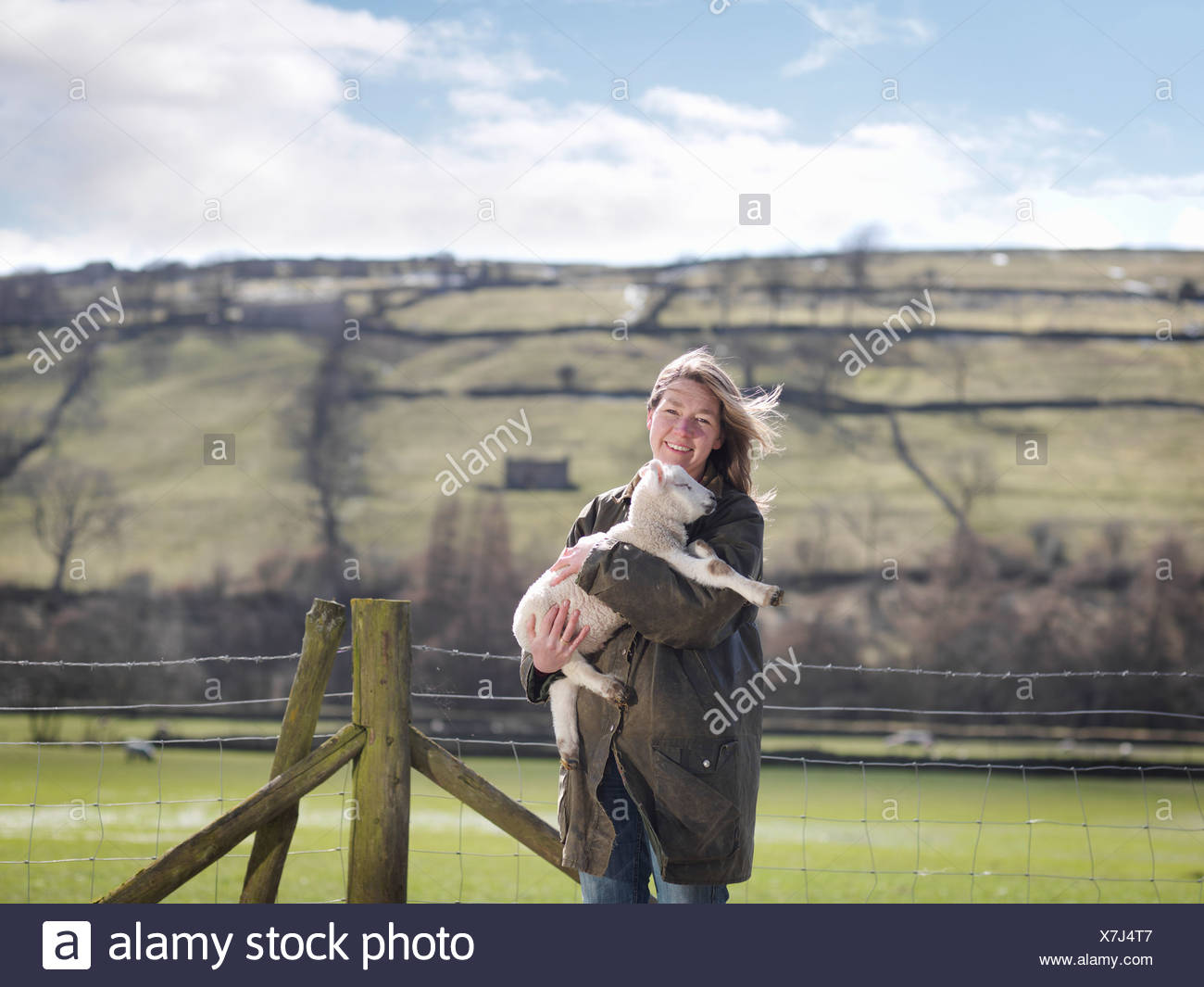 Woman holding lamb in front of fence - Stock Image