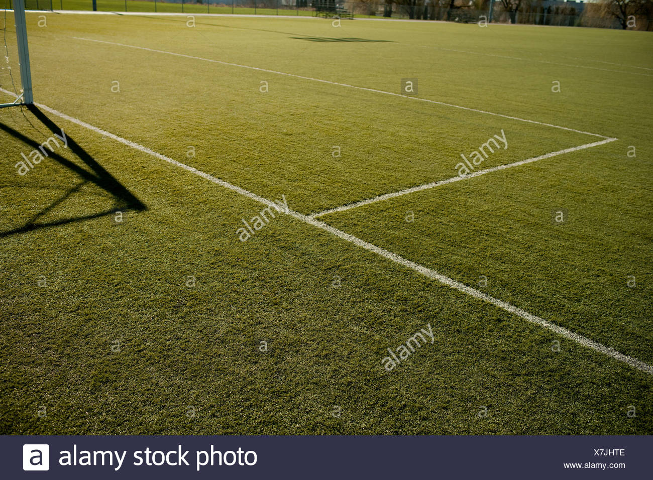 Line markings on football pitch - Stock Image