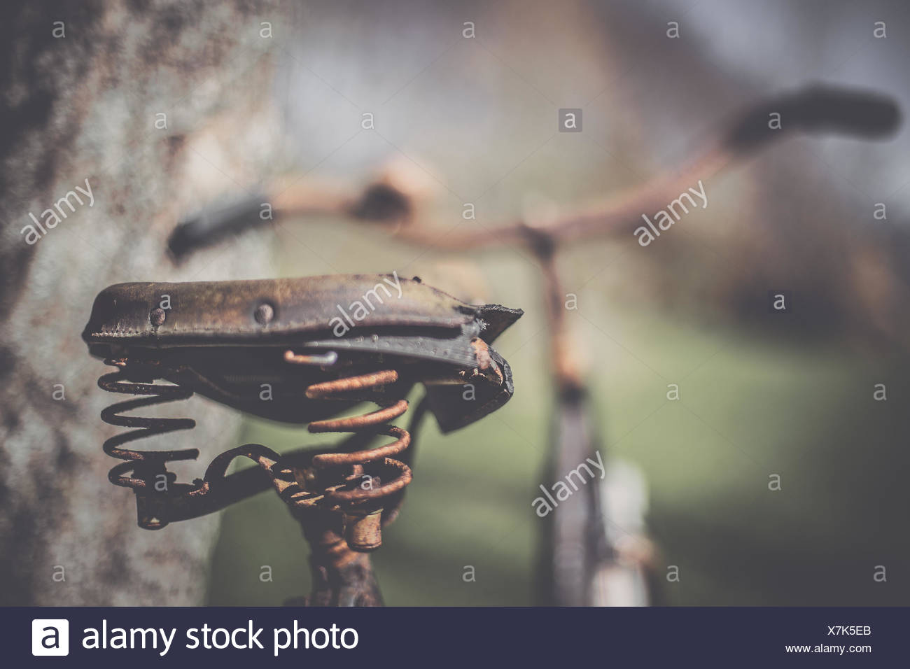 Rusty bicycle saddle - Stock Image
