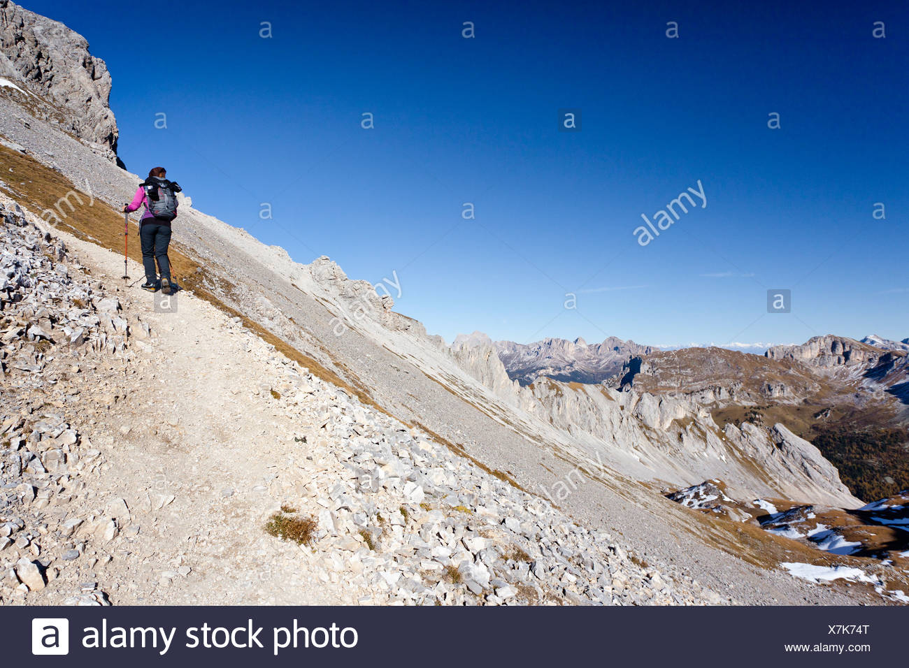 Hiker ascending the Bepi Zac climbing route in the San Pellegrino Valley above the San Pellegrino Pass Stock Photo