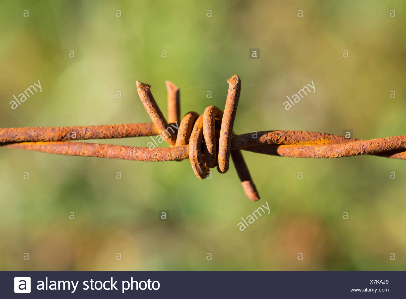 Old Wire Fence Stock Photos & Old Wire Fence Stock Images - Alamy