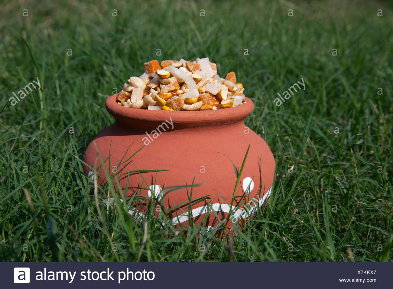 Earthen pot with variety of ingredients - Stock Image