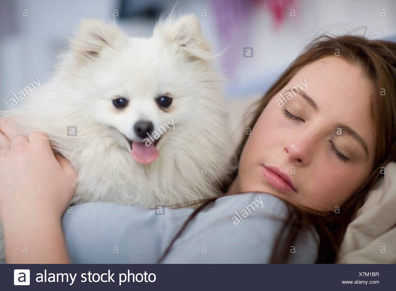 Teenage girl asleep with dog - Stock Image