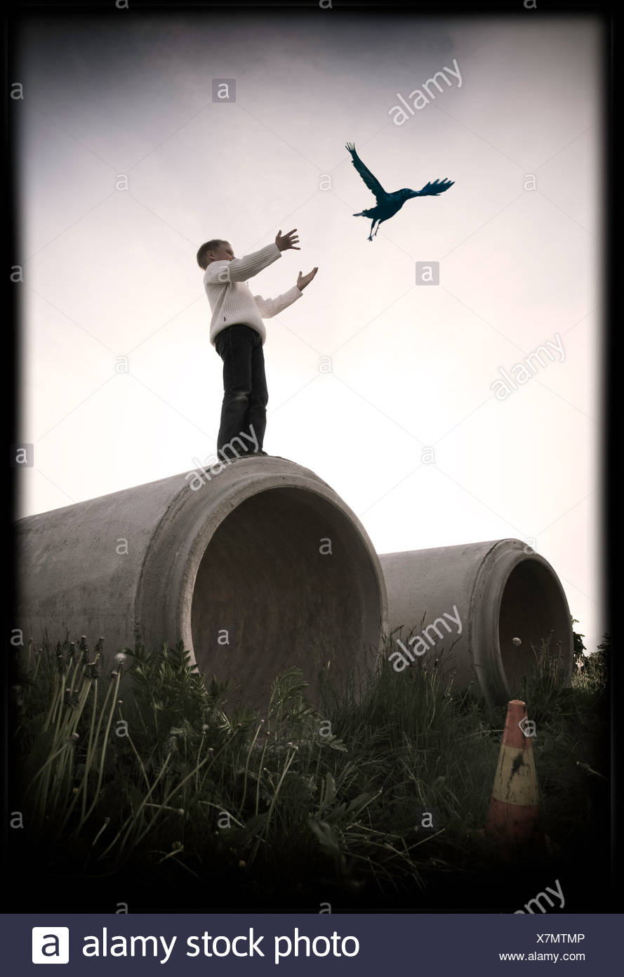 Young boy standing on large concrete drain releasing bird - Stock Image
