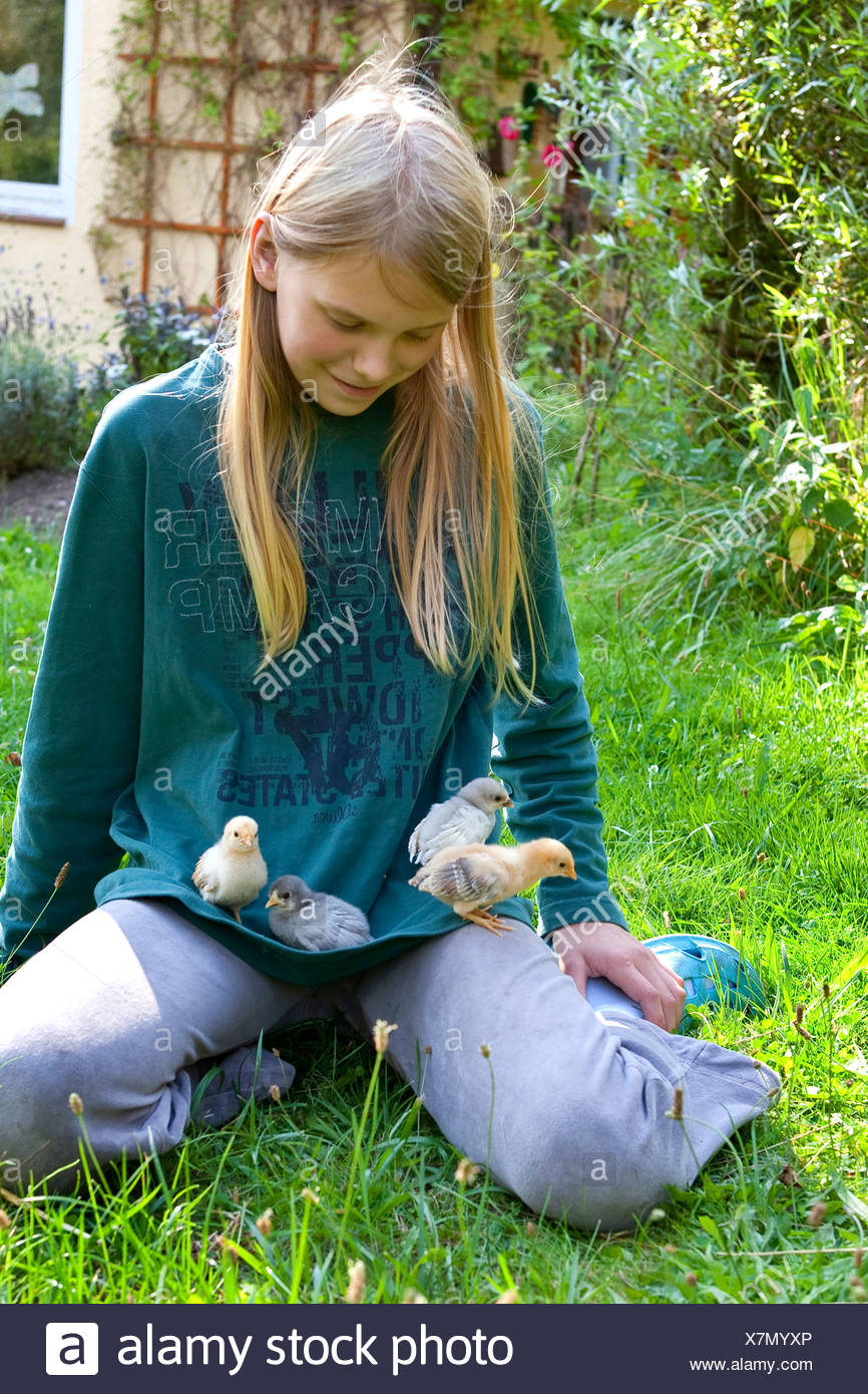 domestic fowl (Gallus gallus f. domestica), girls playing with hen's chicks in the garden, Germany Stock Photo