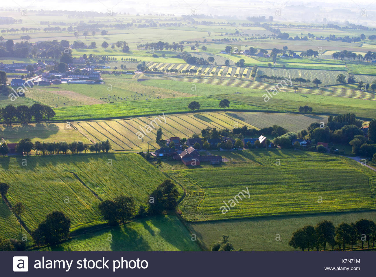 aerial view to agricultural area with fields, grasslands and hedges in spring, Belgium, Kempen Stock Photo