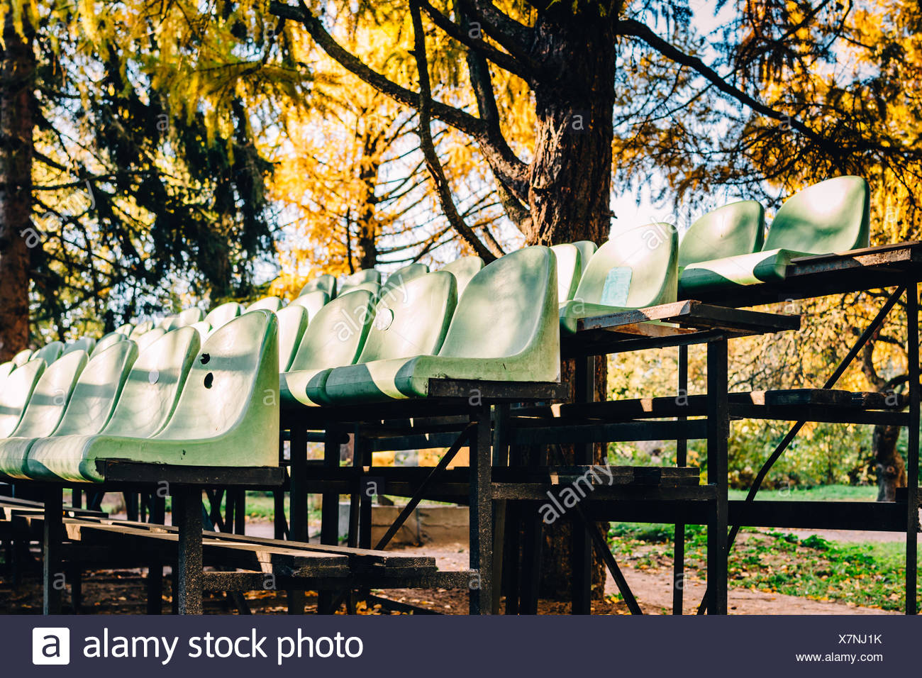 Seats By Autumn Trees - Stock Image