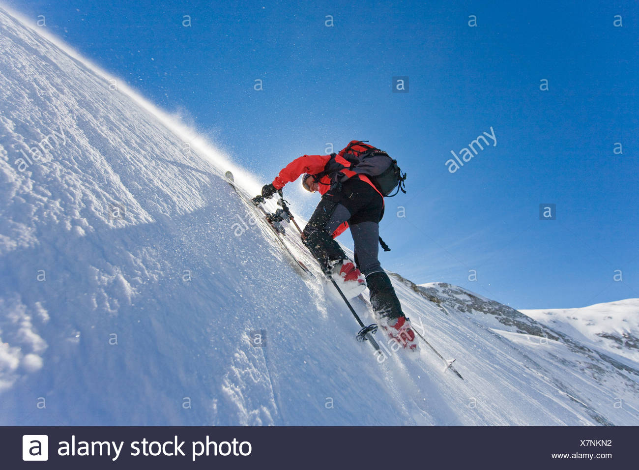 Rear view of skier climbing snowcovered mountain with skis, Knallstein, Tennengebirge, Tennengau, Salzburg, Austria - Stock Image