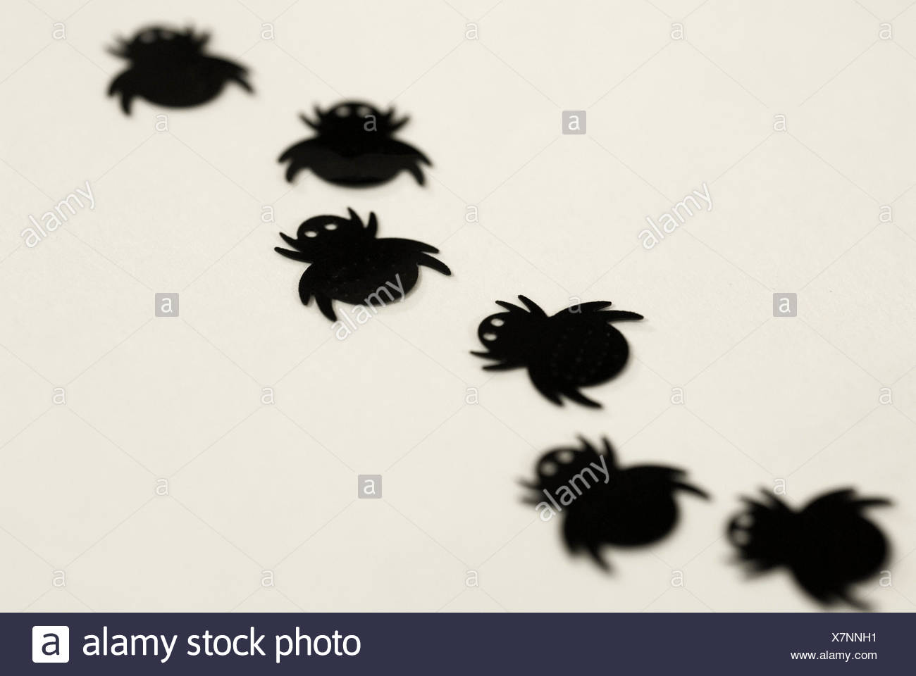 creepy crawly - Stock Image