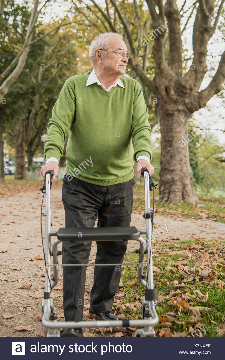 Senior man with wheeled walker in park - Stock Image