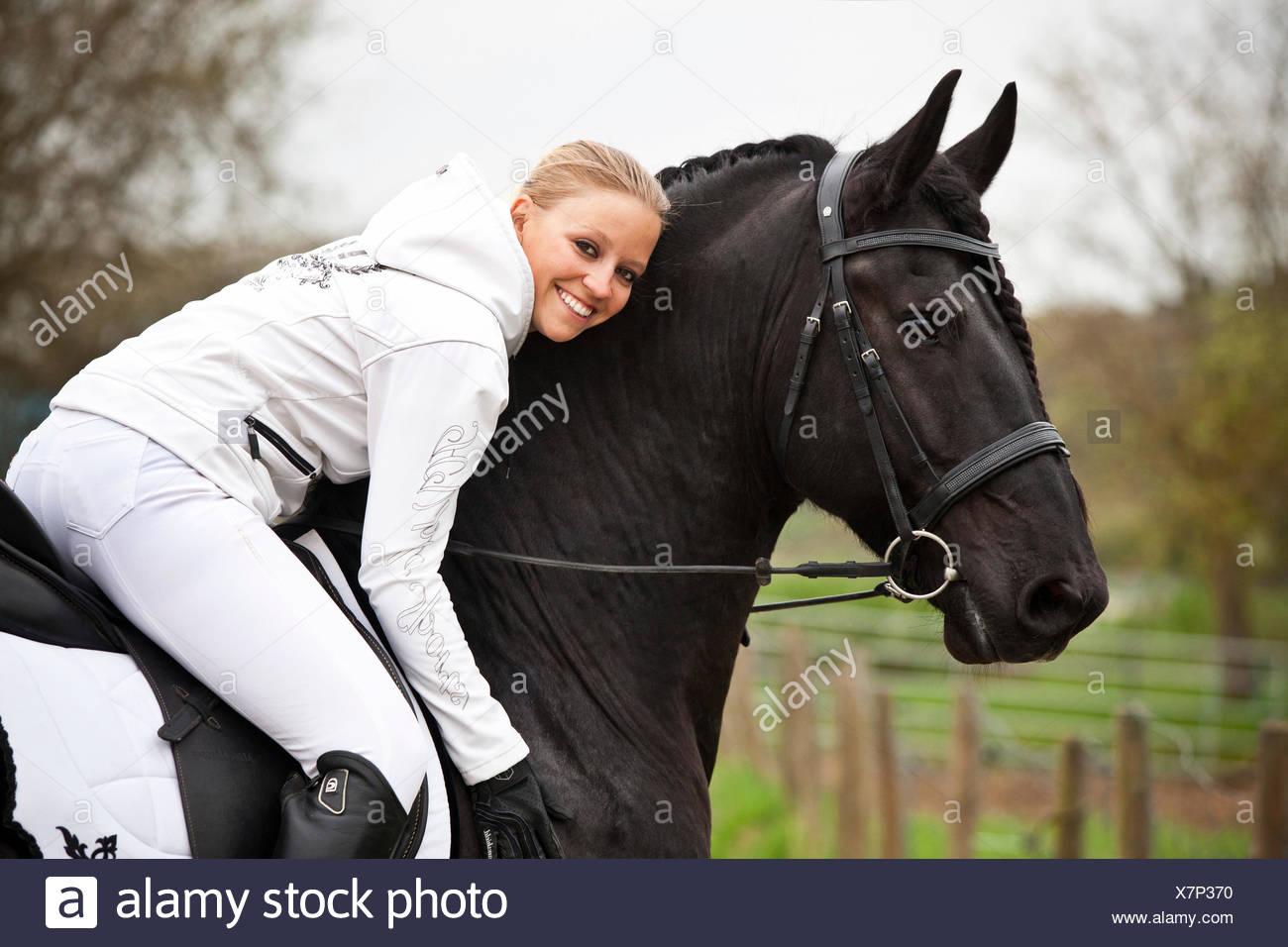 Friesian or Frisian horse, stallion, English bridle, with female rider on horseback - Stock Image
