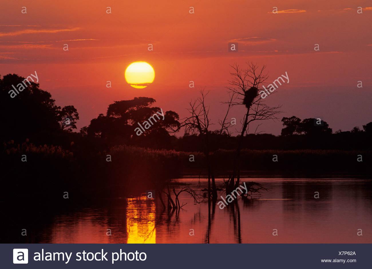 Sabie River at sunset, Kruger National Park, South Africa - Stock Image