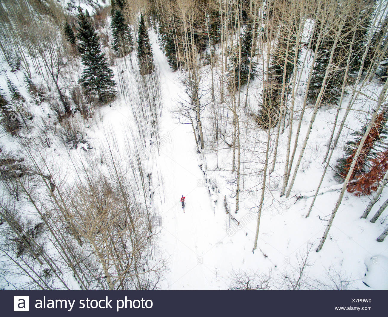 A cross country skier photographed using a drone. - Stock Image