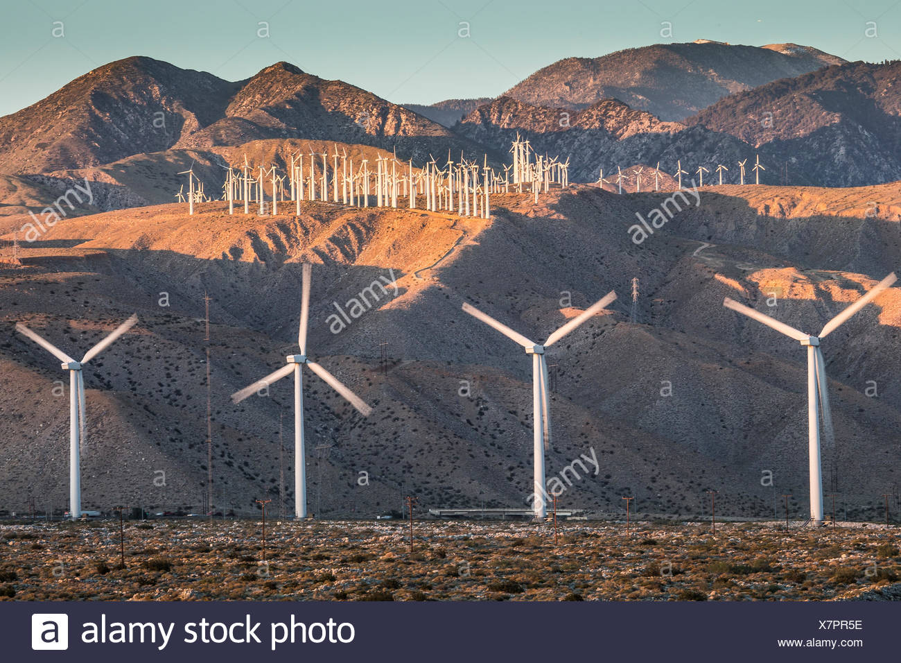 A few of the more than 3,000 wind turbines at the San Gorgonio Pass Wind Farm outside Palm Springs. The facility was developed beginning in the 1980s, and is one of three wind farms in the state. At bottom middle are vehicles on Interstate 10. - Stock Image