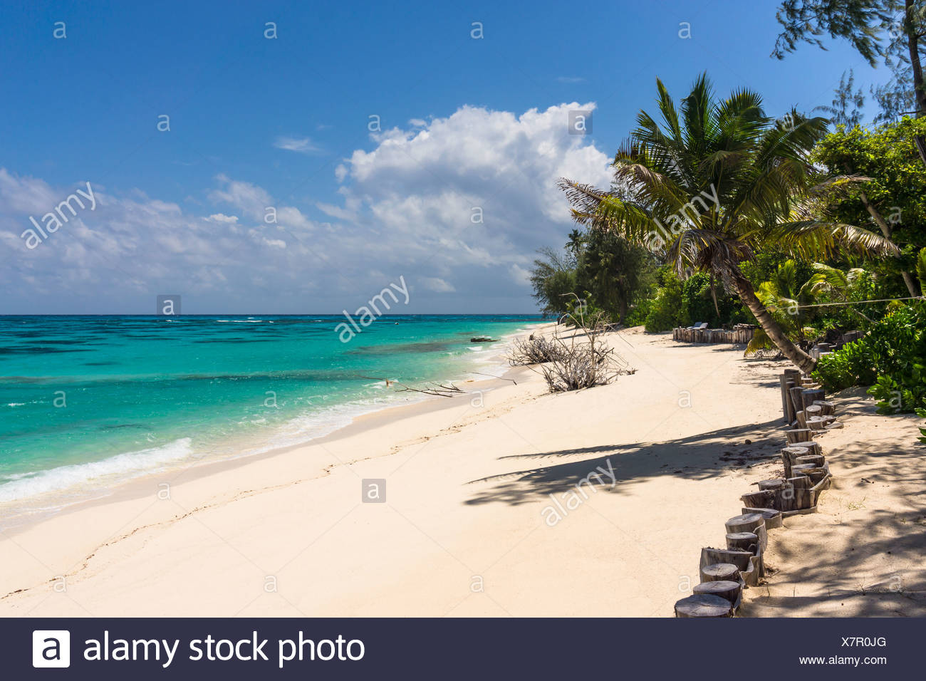 Seychelles, Northern Coral Group, Denis Island, Private beach Stock Photo
