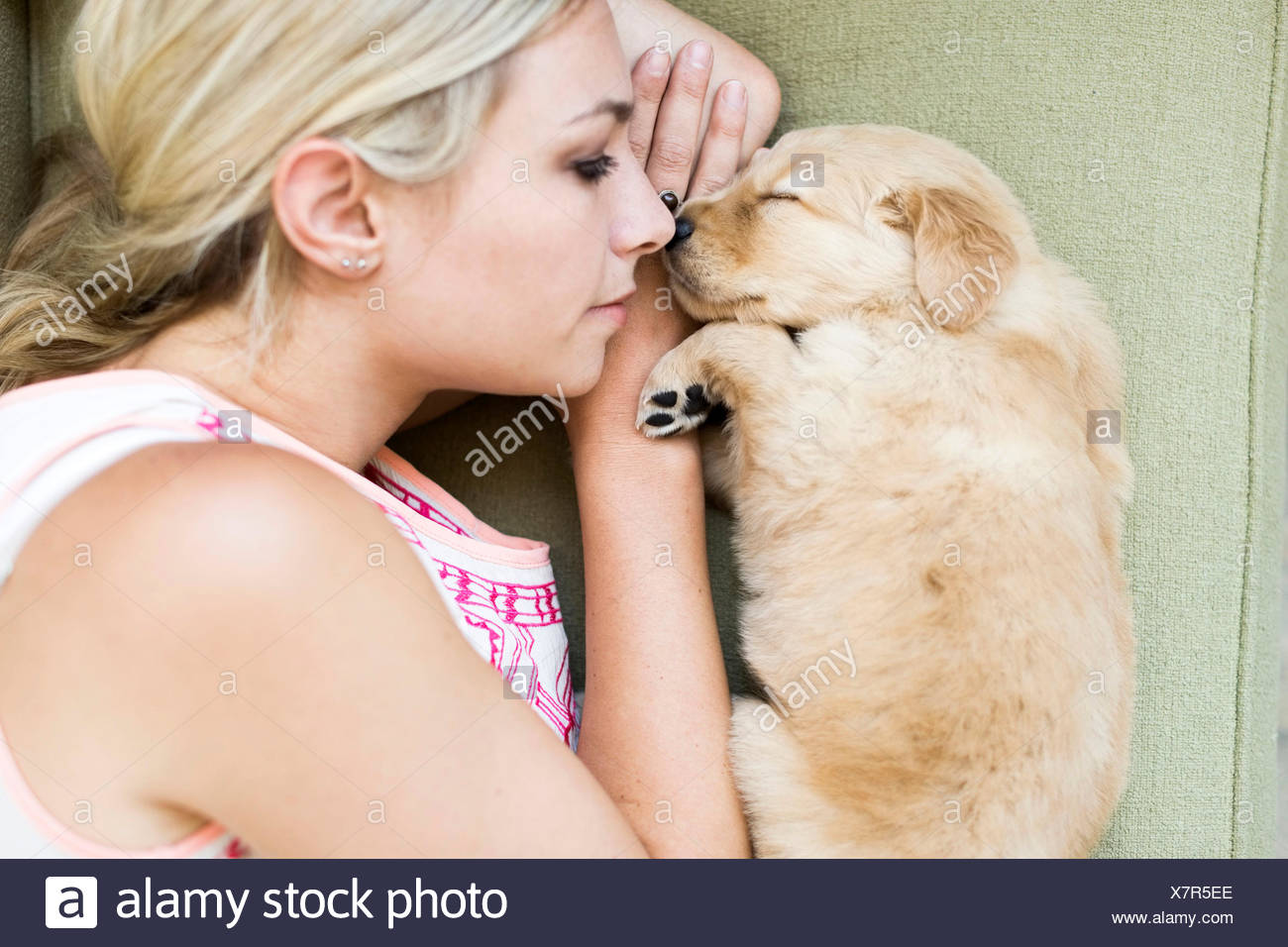 Portrait of puppy with owner lying down on sofa - Stock Image