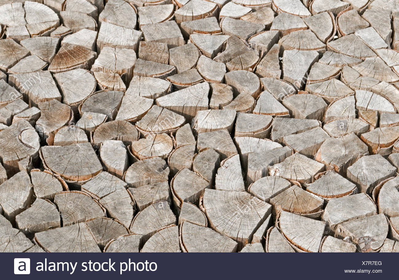 Chopped and Stacked wood logs - Stock Image