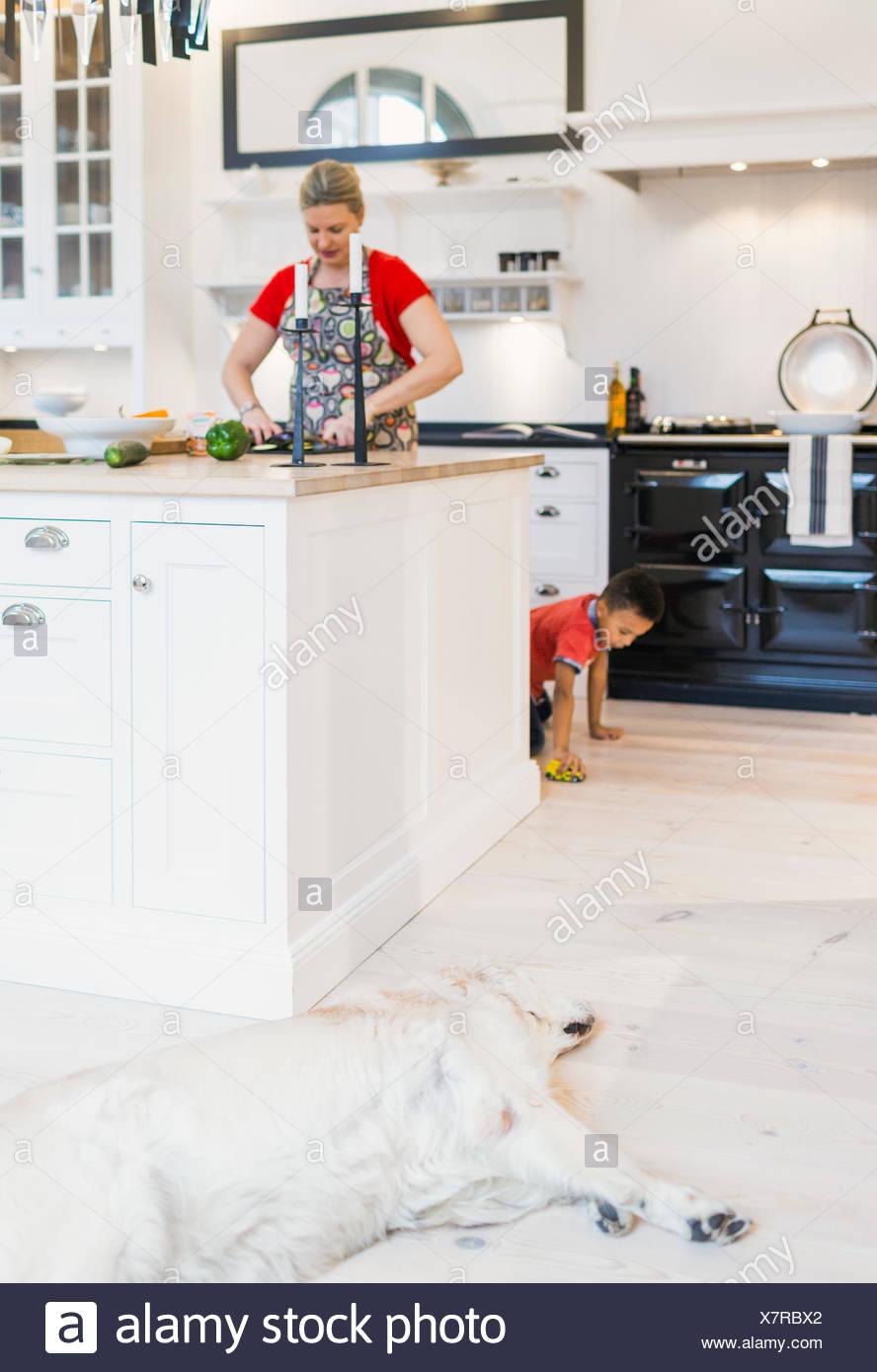 Dog sleeping on hardwood floor with woman cooking in domestic room - Stock Image
