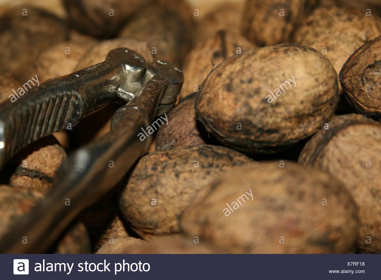 walnuts - Stock Image
