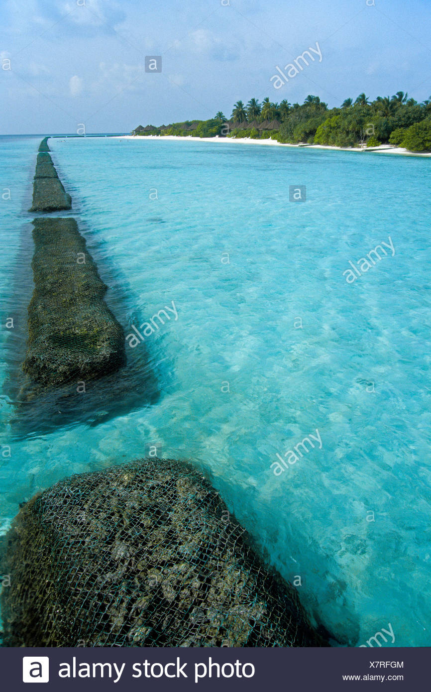 Breakwaters, protective coral wall, Helengeli, North Male Atoll, Maldives, Indian Ocean, Asia - Stock Image