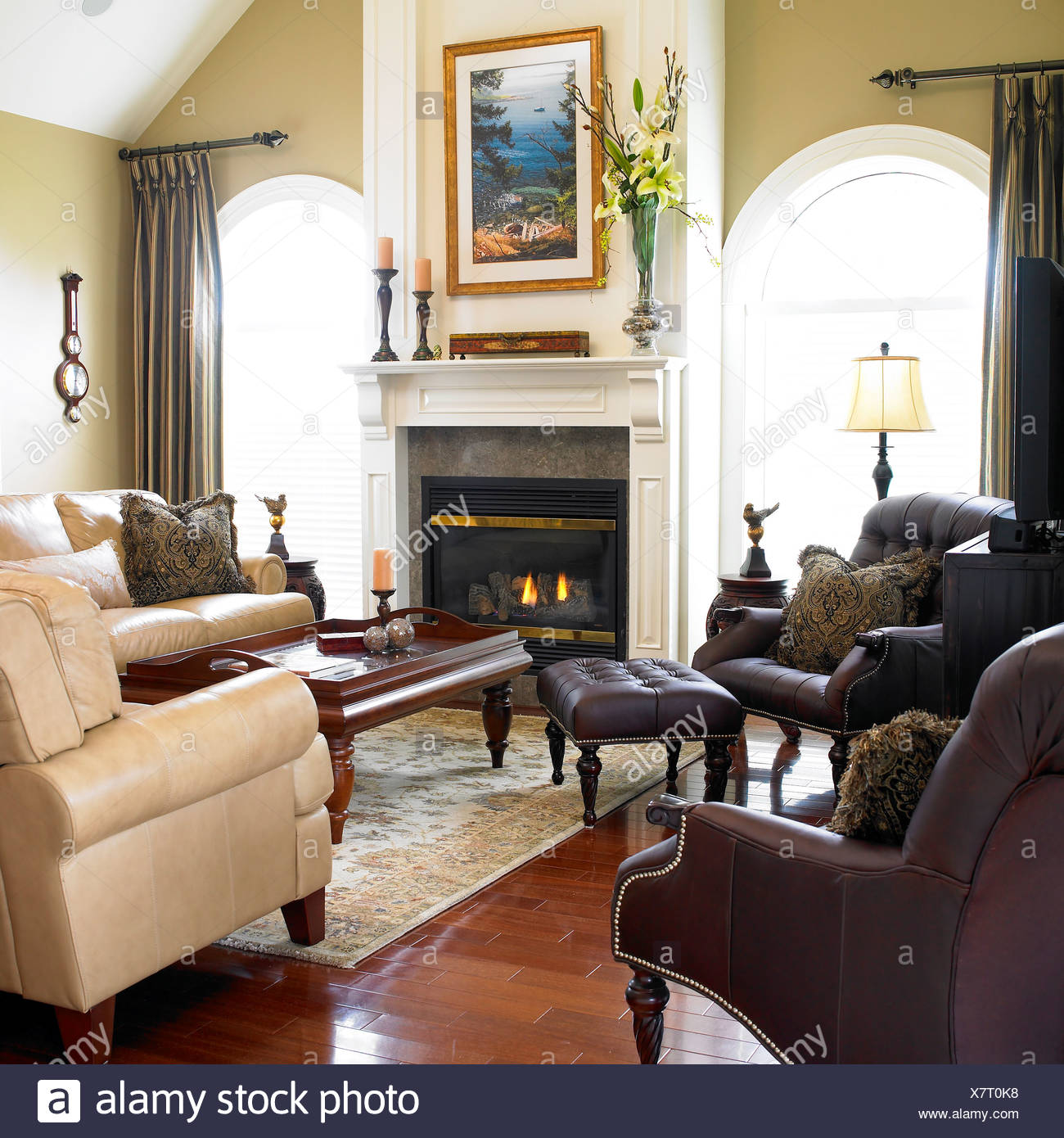 Contemporary living room with leather furniture and fireplace victoria vancouver island british columbia canada