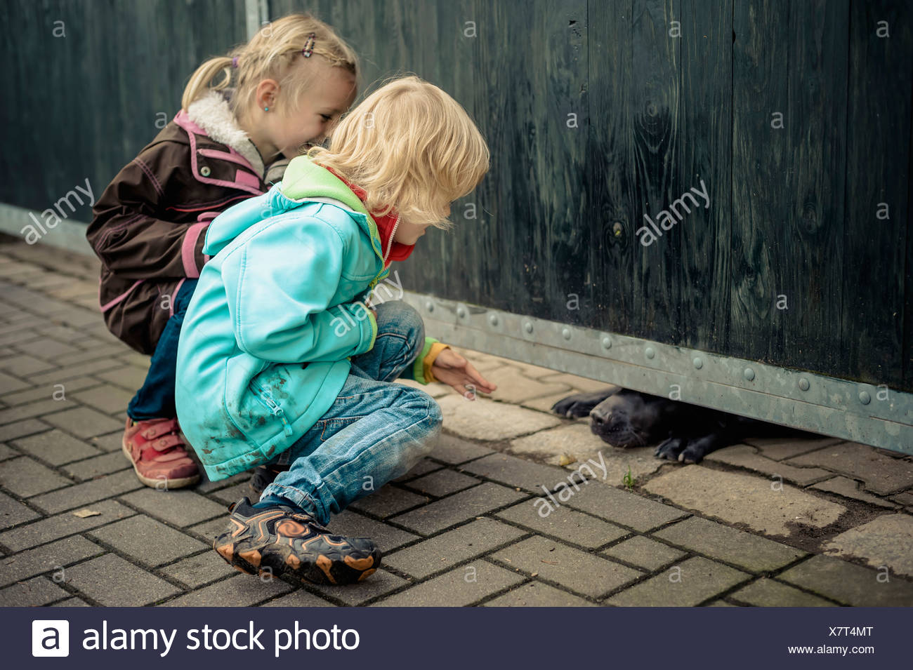 Two children looking at snout of watchdog - Stock Image