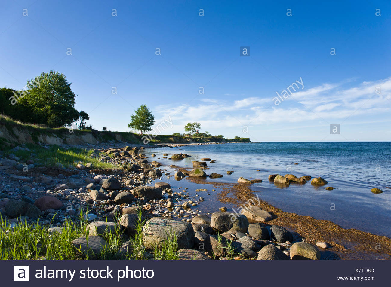 cliff staberhuk,insel fehmarn Stock Photo