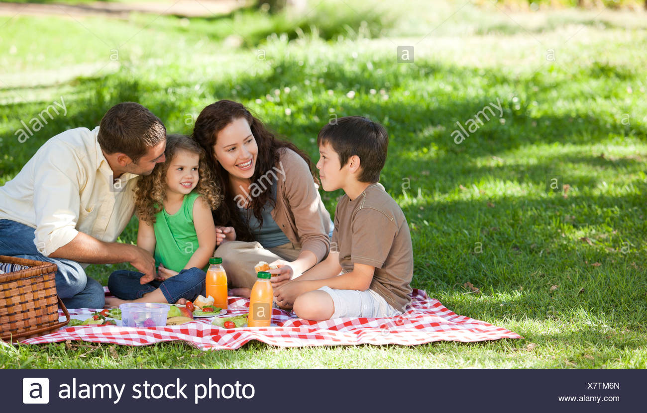 Family  picnicking together - Stock Image