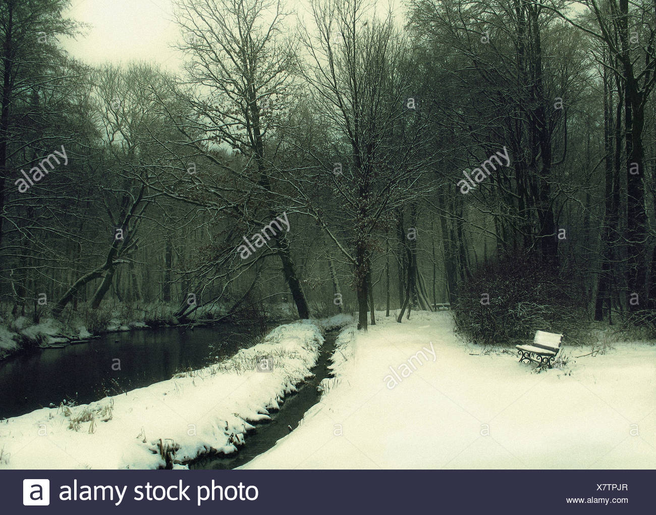 A landscape with a wood or garden in winter, a little bench on the left, covered with snow, and a river bank on the right. - Stock Image