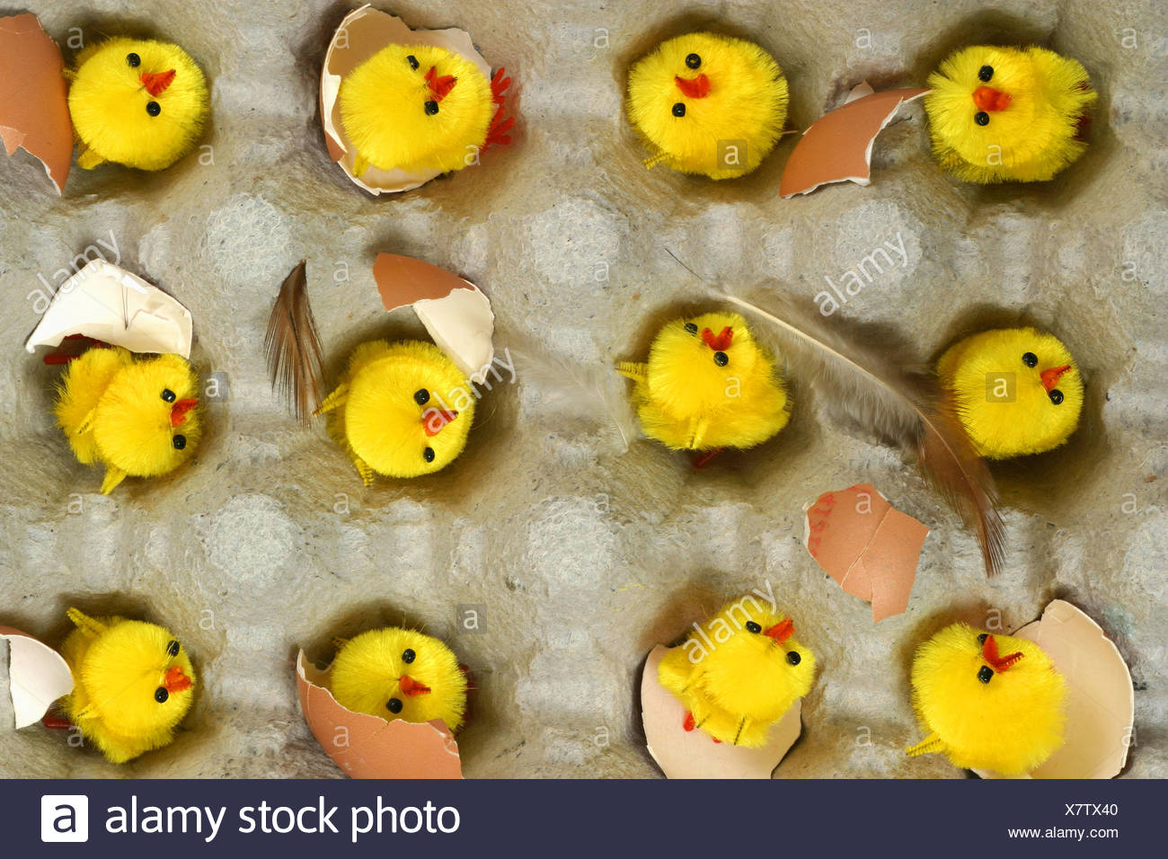 A carboard egg box filled with toy furry chicks, with pieces of shell and feathers around them - Stock Image