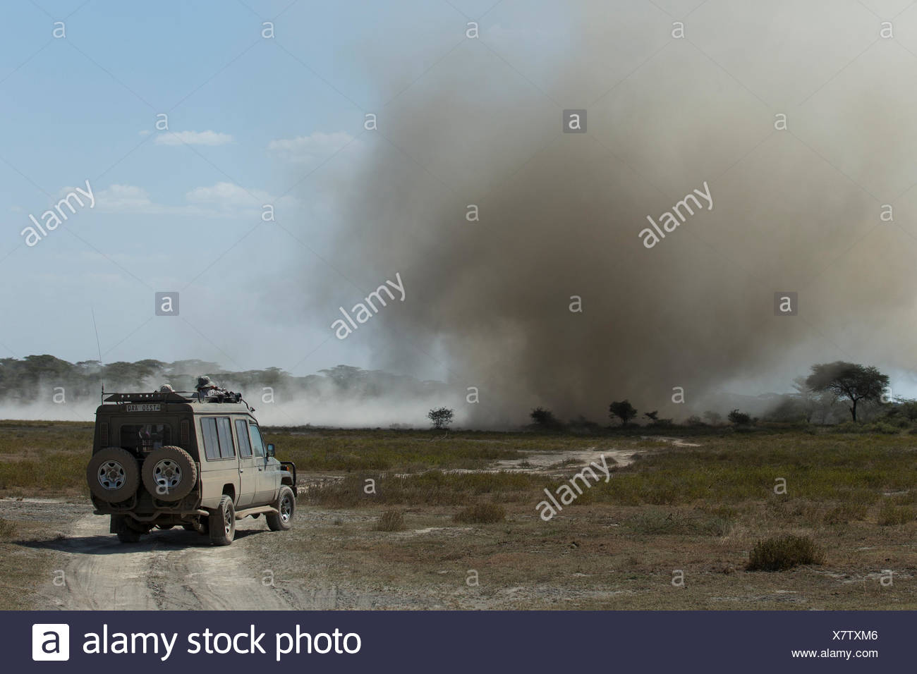 Massive dust devil rakes the dry shoreline of Lake Ndutu, Ngorongoro Conservation Area, Tanzania. - Stock Image
