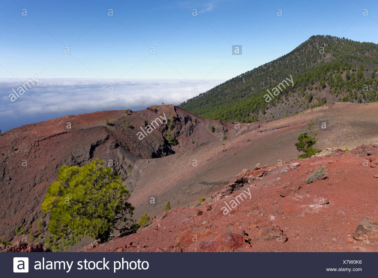 Crater of the volcano San Martín, Cumbre Vieja in Fuencaliente, La Palma, Canary Islands, Spain - Stock Image