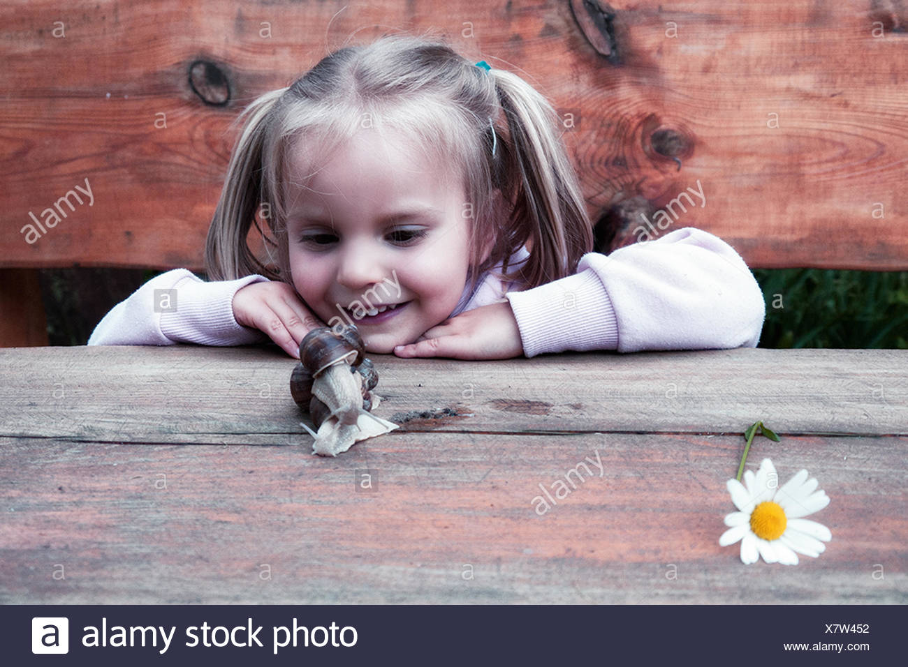 Girl looking at a snail - Stock Image