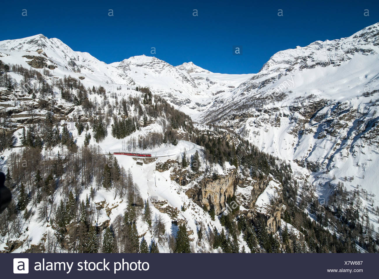 Aerial picture of the red Bernina train going to Bernina Pass in winter, Alp Grum, Poschiavo Valley, Canton Grigioni, Switzerland, - Stock Image