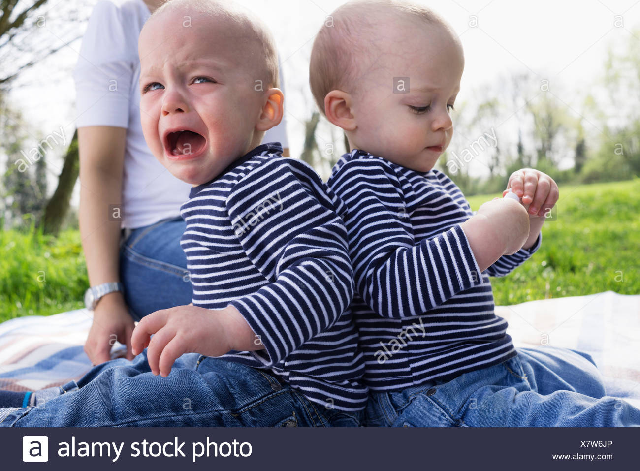 Baby twin brothers back to back on picnic blanket in field - Stock Image
