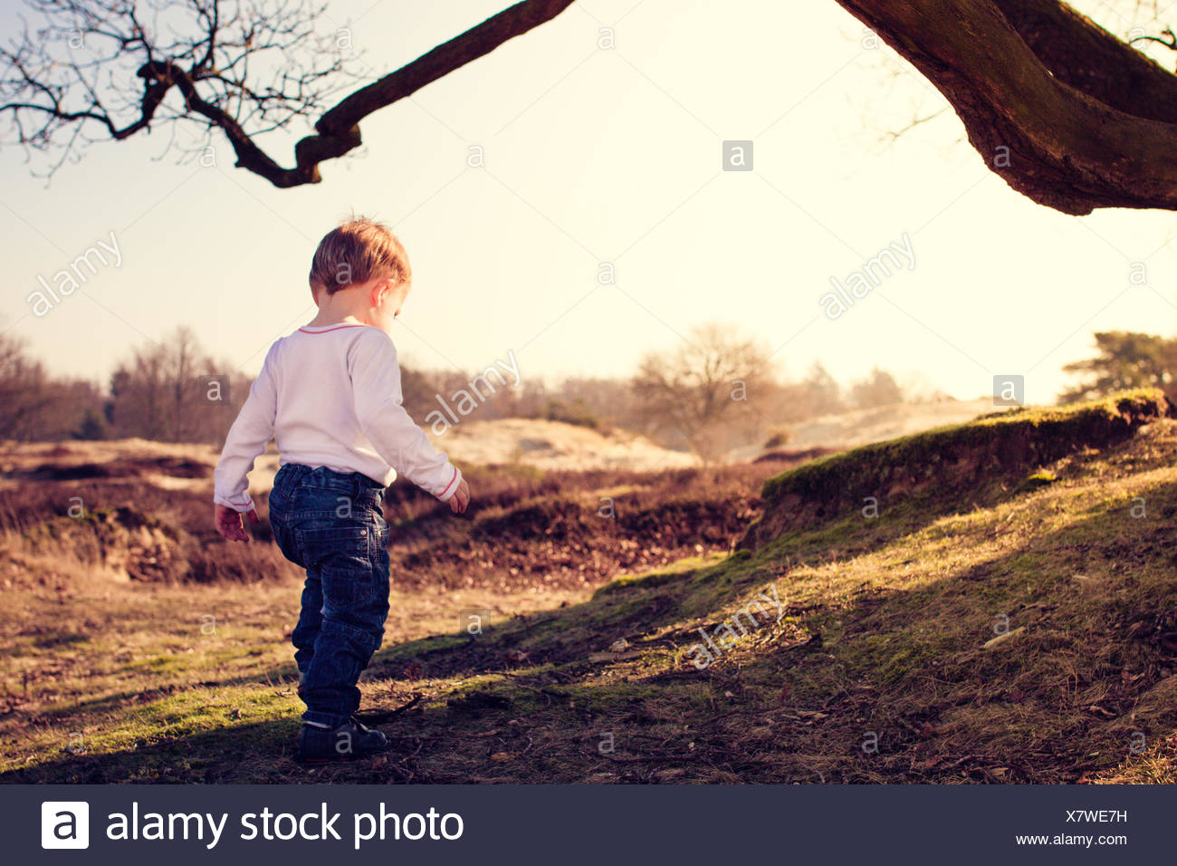 Toddler exploring the countryside - Stock Image