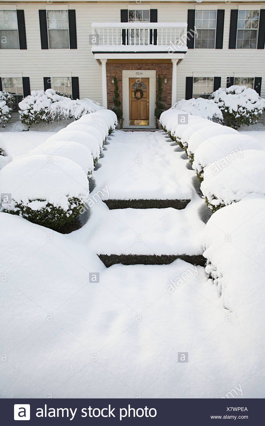 House and garden in the snow - Stock Image