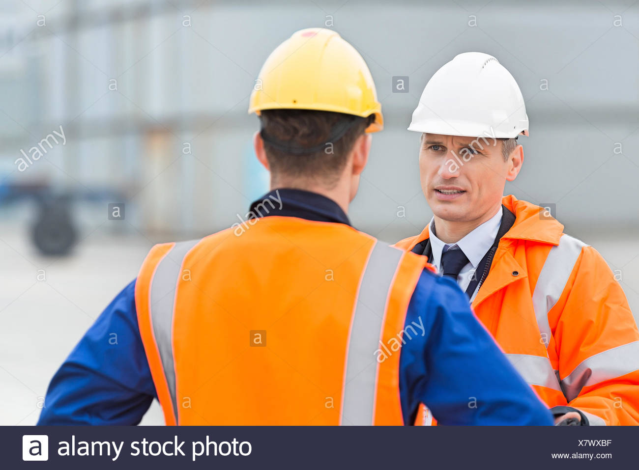 Workers conversing in shipping yard Stock Photo